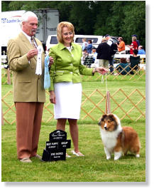Gabby's BEST OF BREED AND GROUP 4TH