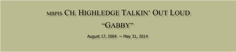 "MBPIS  CH. HIGHLEDGE TALKIN' OUT LOUD   ""GABBY""  August 17, 2004  ~ May 31, 2014"