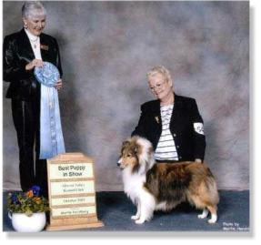 Lexi is pictured at 8 months old, winning BEST PUPPY IN SHOW!