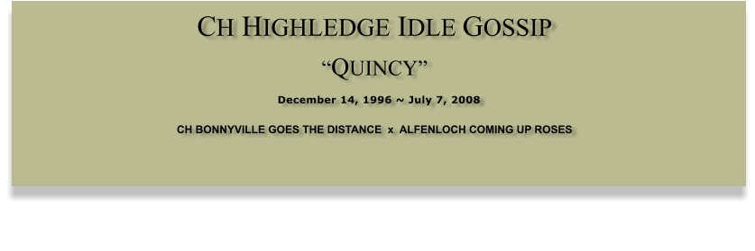 "CH HIGHLEDGE IDLE GOSSIP  ""QUINCY""  December 14, 1996 ~ July 7, 2008 CH BONNYVILLE GOES THE DISTANCE  x  ALFENLOCH COMING UP ROSES"